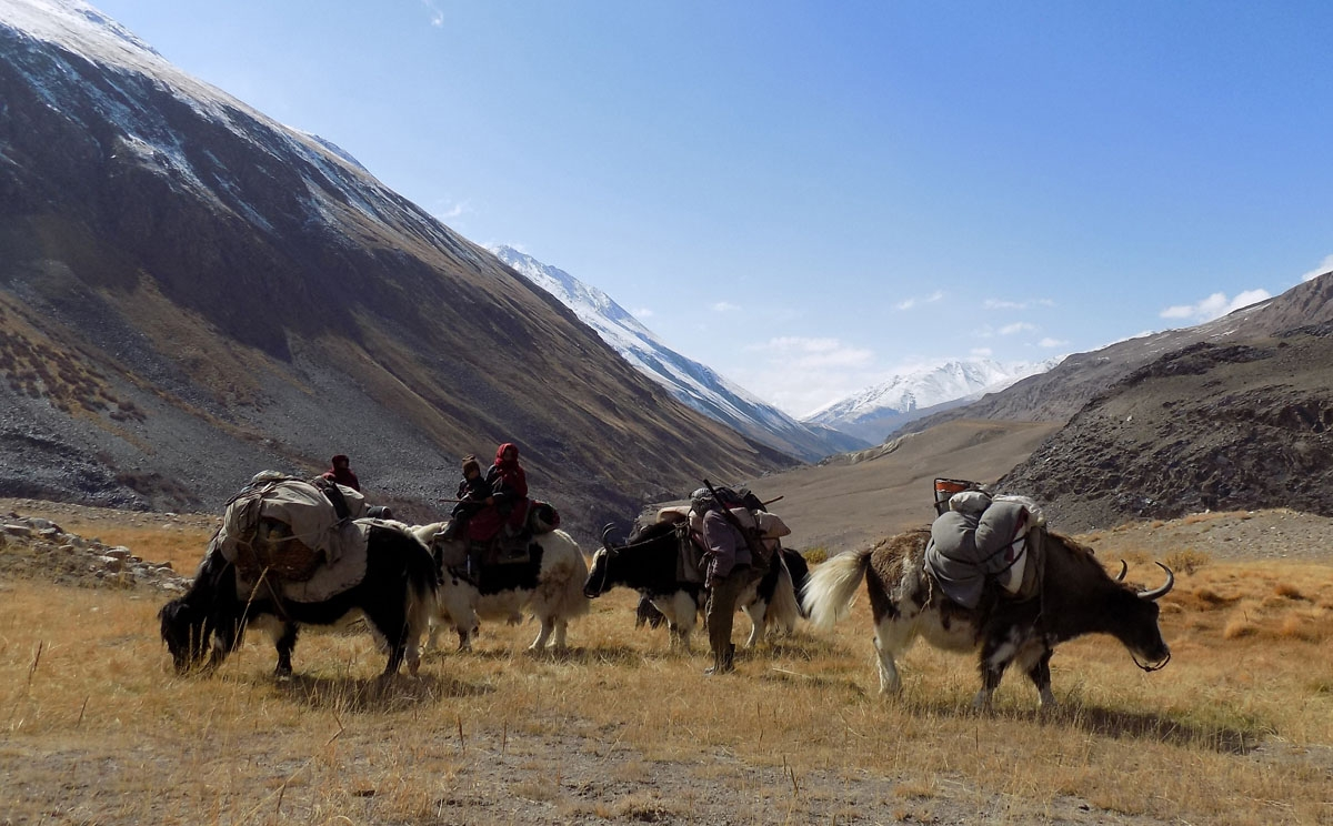 This picture taken on October 7, 2017 shows Kyrgyz nomad families travelling on Yaks in the Wakhan Corridor in Afghanistan.
