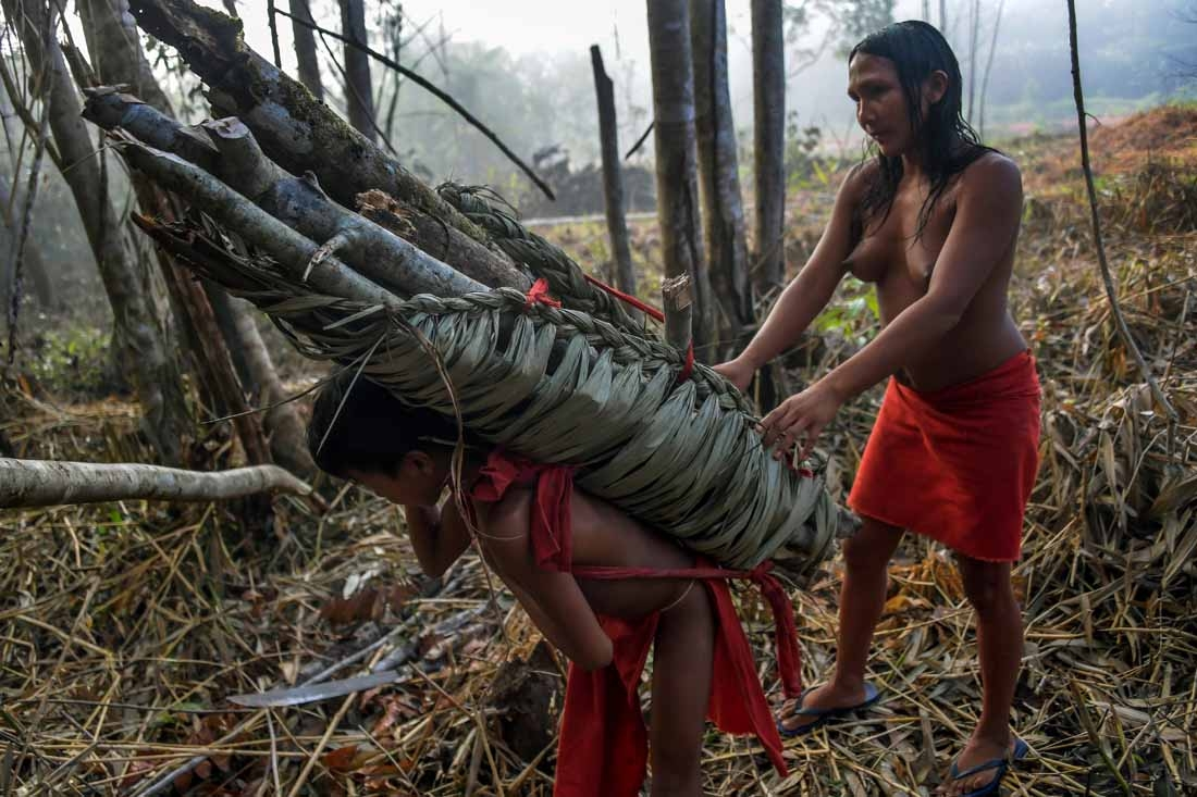A Waiapi boy and his mother carry wood for a fire pit, at the Manilha village in the Waiapi indigenous reserve in Amapa state in Brazil on October 13, 2017.
