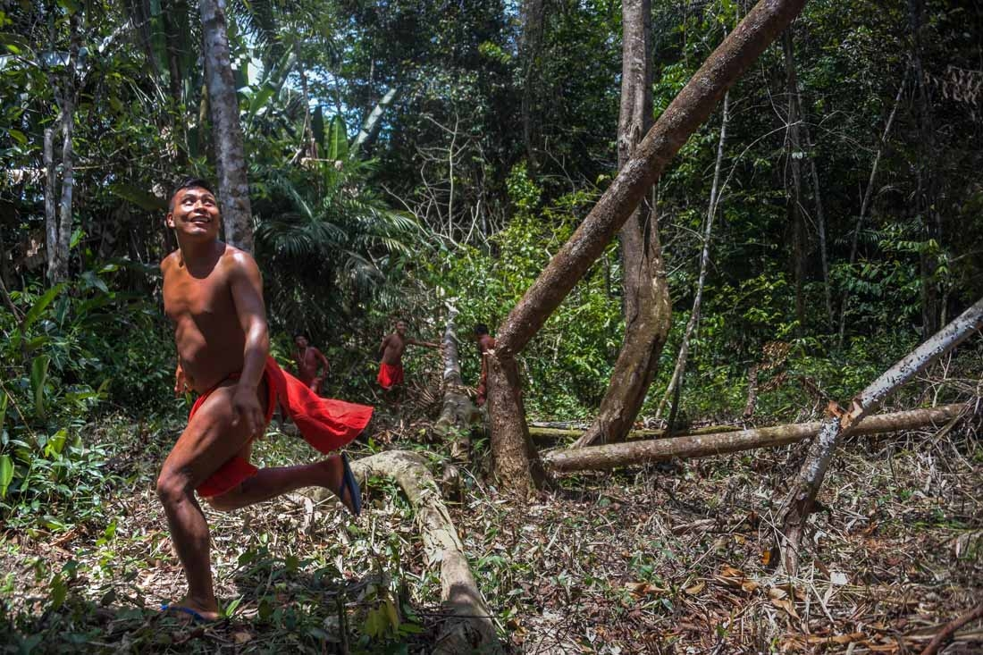 A Waiapi man runs after cutting down a tree to make a manioc field, at the Waiapi indigenous reserve in Amapa state in Brazil on October 14, 2017. When Waiapis walks into the Amazon forest surrounding their village, they do not see trees, but a kind of sh