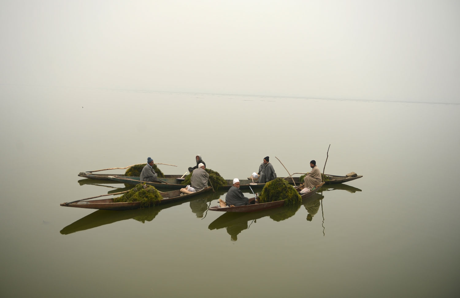 Members of Kashmir's Lakes and Waterways Authority collect weeds lying on the surface of Dal Lake  during a dense fog in Srinagar on November 20,2016