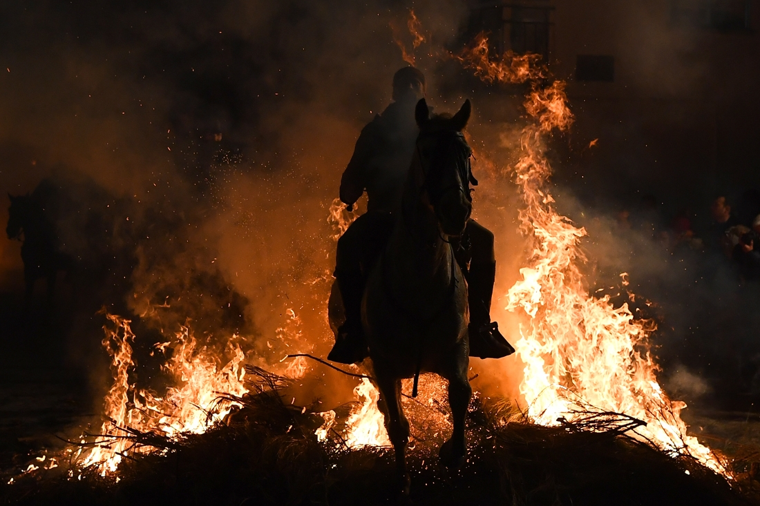 A horseman jumps over a bonfire in the village of San Bartolome de Pinares in the province of Avila in central Spain, during the opening of the traditional religious festival Luminarias in honour of San Antonio Abad (Saint Anthony), patron saint of animal