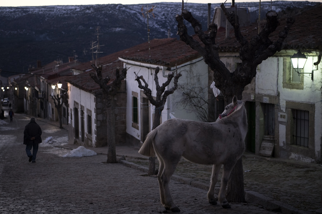The village of San Bartolome de Pinares ahead of the festival.