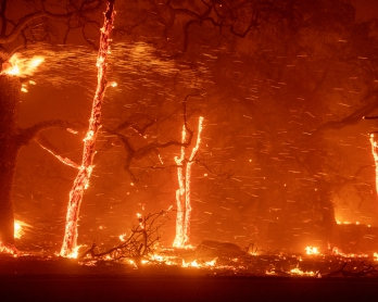 Embers fly as wind and flames from the Camp fire tear through Paradise, California on November 8, 2018. -