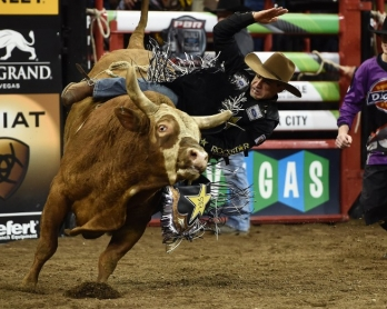 RODEO-US-PBR-BULL RIDING